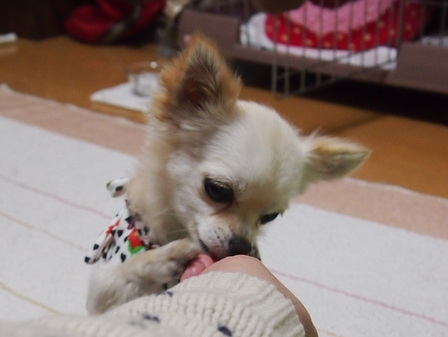 blog1169.jpg