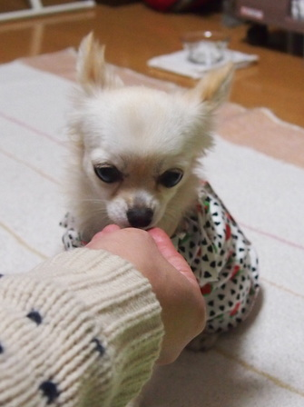 blog1171.jpg