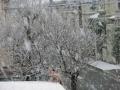2/4の雪