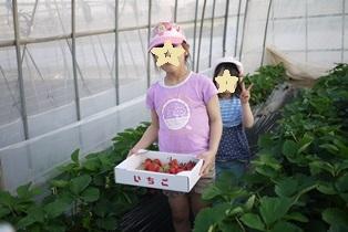 イチゴ狩りpaint 120505