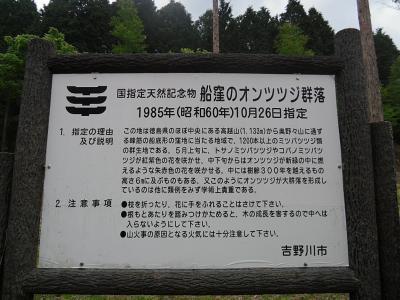 20120522a.jpg