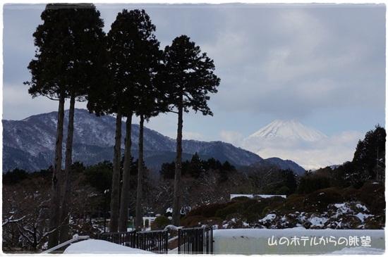 富士山も見えたよ