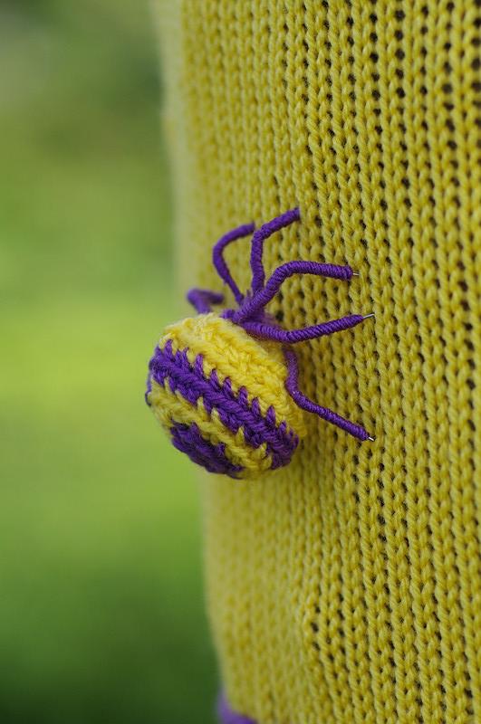 黄紫毛糸蜘蛛