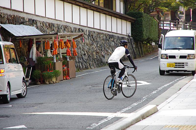 蜜柑と高野槙と自転車