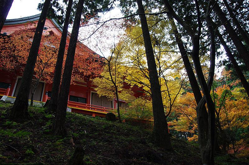 横川中堂の紅葉