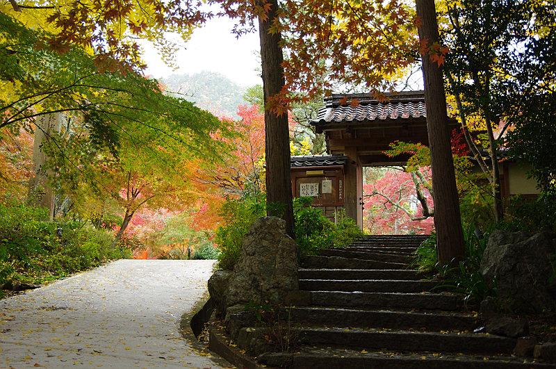 神蔵寺入り口