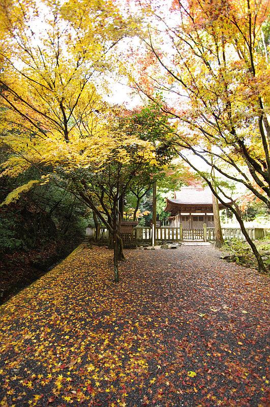 開山堂への道