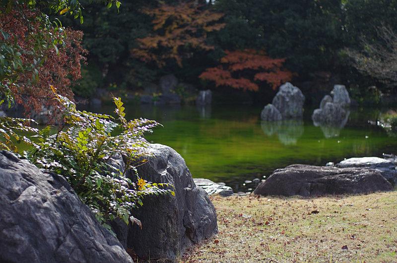 日本庭園、不思議な泉