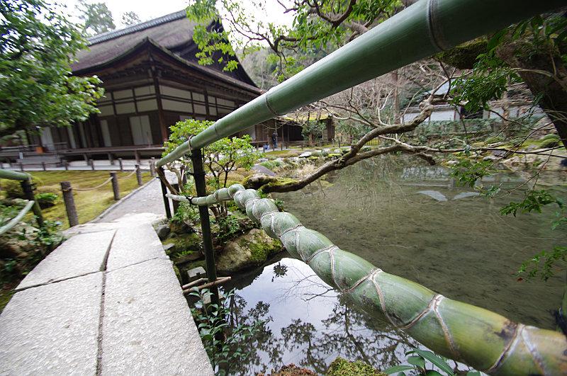 竹の蛇さん