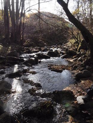 けんちゃんの川