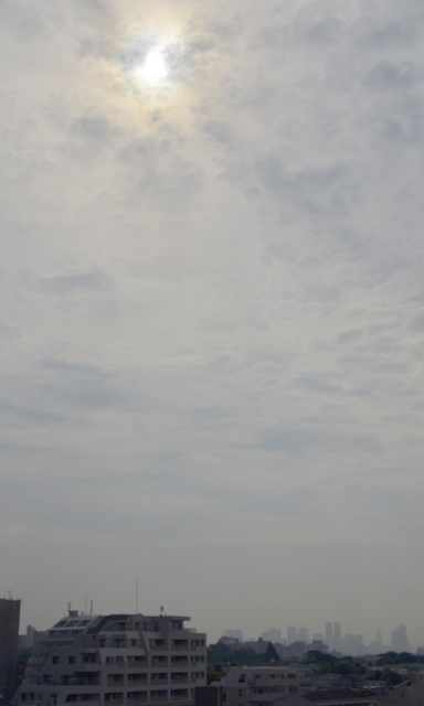 nisshoku1.jpg