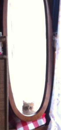 鏡さん (1)