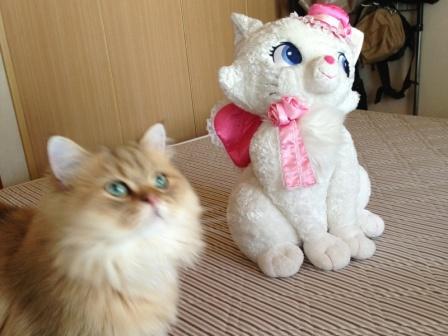 レオンとマリーちゃん (4)