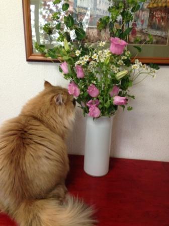 レオンとお花 (2)