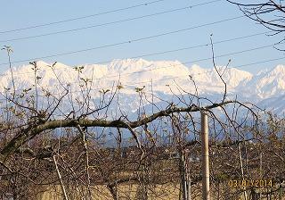 日中の立山