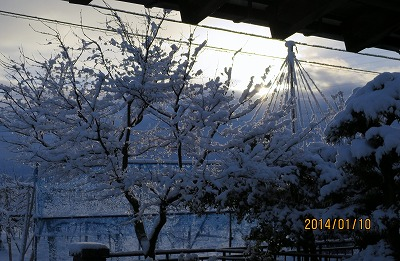 IMG_0515雪ばれの日の出