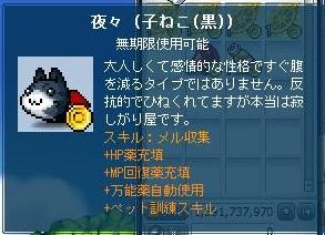 Maple130124_041511.jpg