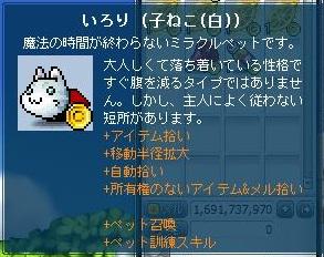 Maple130124_041513.jpg
