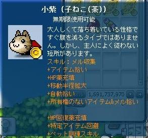Maple130124_041514.jpg