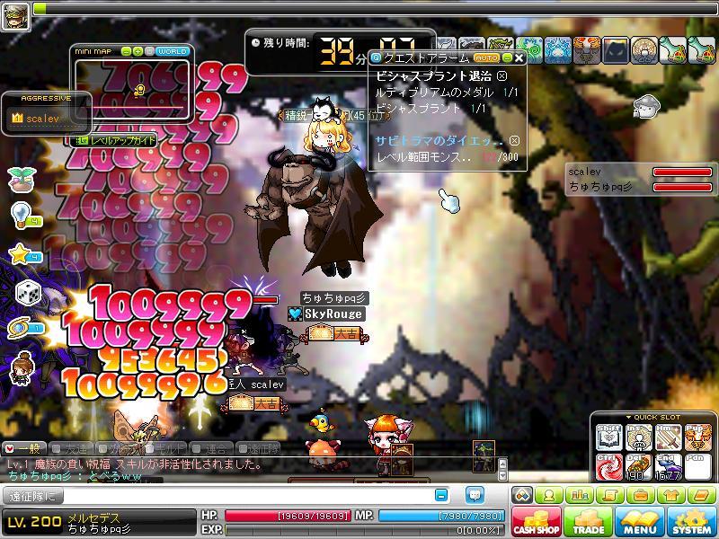 Maple130210_201229.jpg