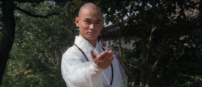 カンフートレジャー龍虎少林拳:画像2