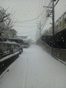 成人の日 雪