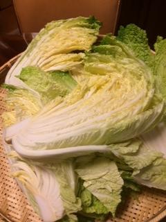 かわかす白菜