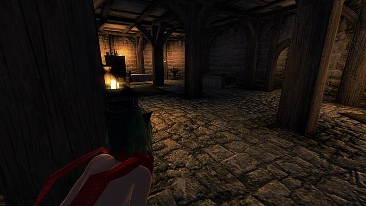 Oblivion 2013-02-22 16-41-47-99