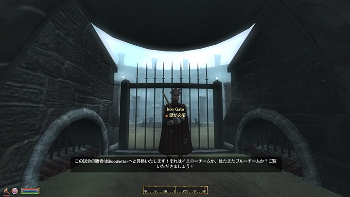 Oblivion 2013-03-13 09-41-30-46