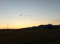 __ashi.jpg