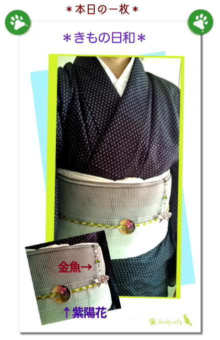 *kimono*