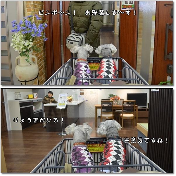 20130211kaimono3.jpg