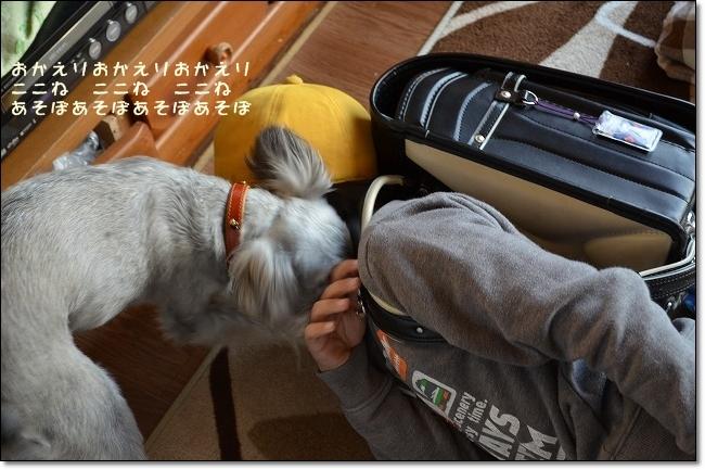 coconon_20121113_09959.jpg
