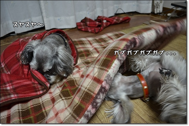 suyasuya1.jpg