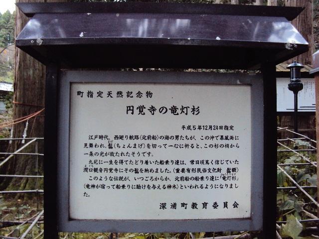 037_20121205215442.jpg