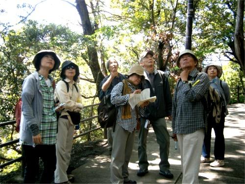 2012-1期報告⑤高尾山