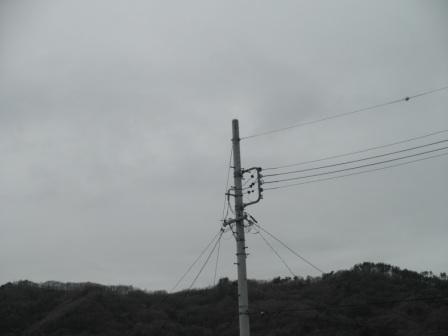 P4271052.jpg