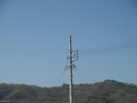 P4291066.jpg