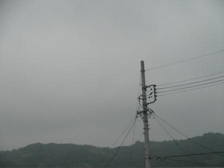 P5291239.jpg