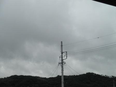 P6101298.jpg