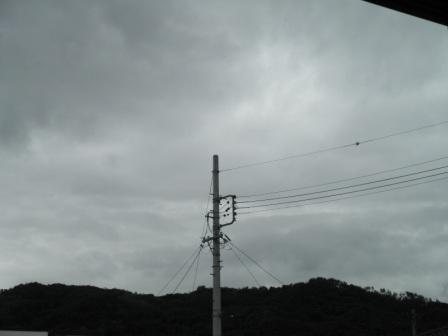 P6121308.jpg