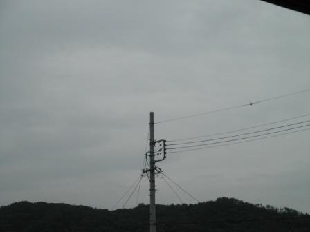 P7011403.jpg