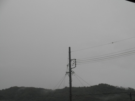 P8141645.jpg