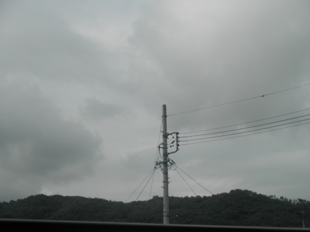 P8171658.jpg