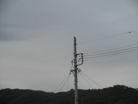 PB052126.jpg