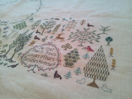 forest9_convert_20130309170345.jpg