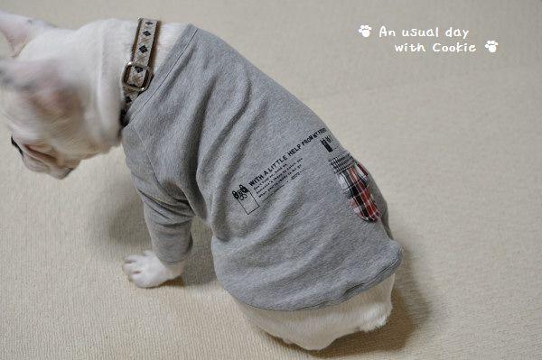 Tシャツうしろ_2761