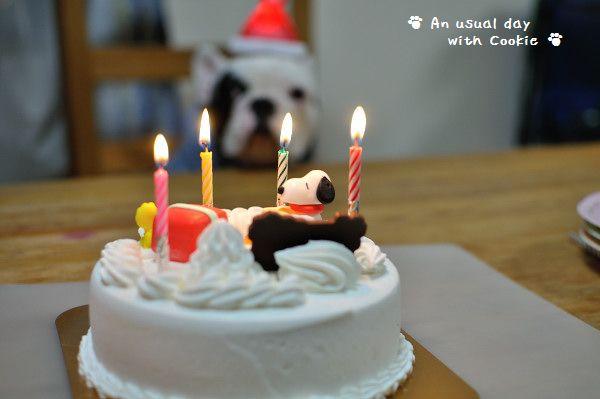ケーキ_3430