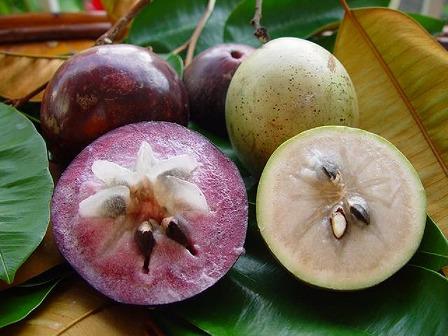 果実の写真