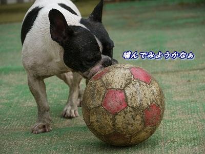 ボール (3)